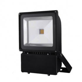 100W LED CW - IP65 Flood Light